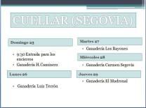 Programa Cuellar (Segovia)