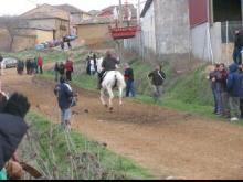 Cintas a caballo en Aguilar de Campos