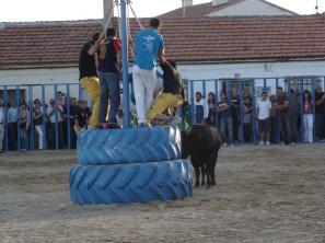 Foto proporcionada por Fernando del Valle