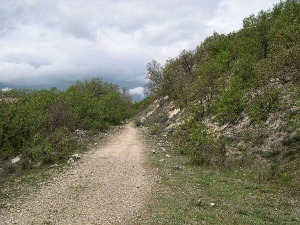 Firme de la subida. Foto: Web de la Provincia de Valladolid