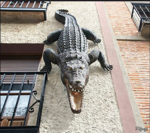 Foto 1. Medina de Rioseco.