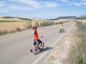 Carretera que va de Castrillo a La Sinova. Foto: Jorge Urdiales