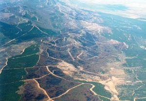 Vista aérea de la zona afectada por el incendio de 1998