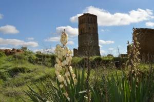 Torre de Villacreces. Foto propia.