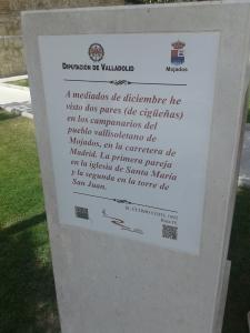 D de Delibes en Mojados. Foto: Jorge Urdiales