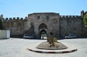 Muralla medieval de Coca. Foto: EnPueblo