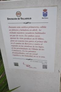Detalle del monolito. Foto: Jorge Urdiales.