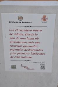 Inscripción en la D de las Rutas de Delibes. Foto: Jorge Urdiales.